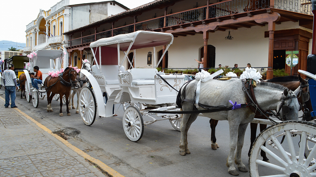 horse drawn carriage granada