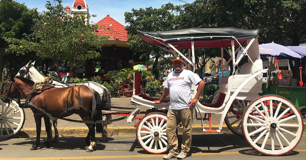 The Charm of a Horse-Drawn Carriage